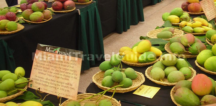 Miami International Mango Festival